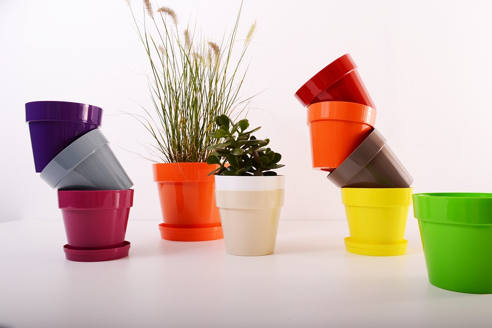 گلدان های رنگی پلاستیکی